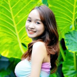 Lily, Vietnam